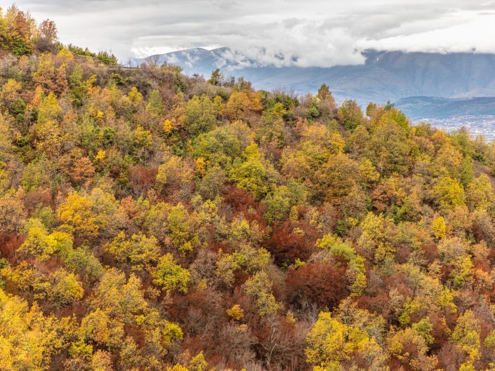 Autumn Colors of Vodno